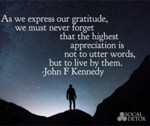 Gratitude addiction recovery quote